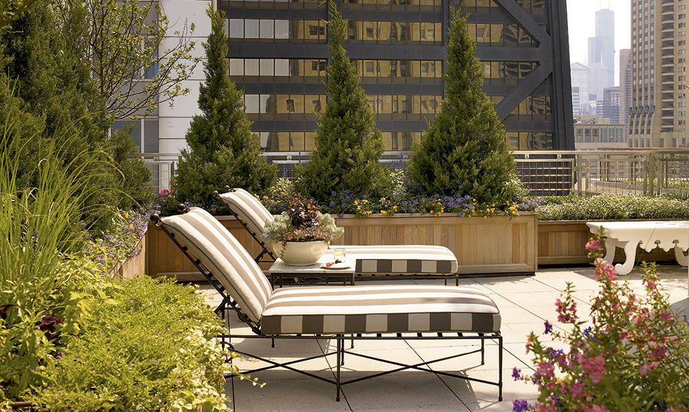 Image Slideshow Image: TerraceNorthChicago 004